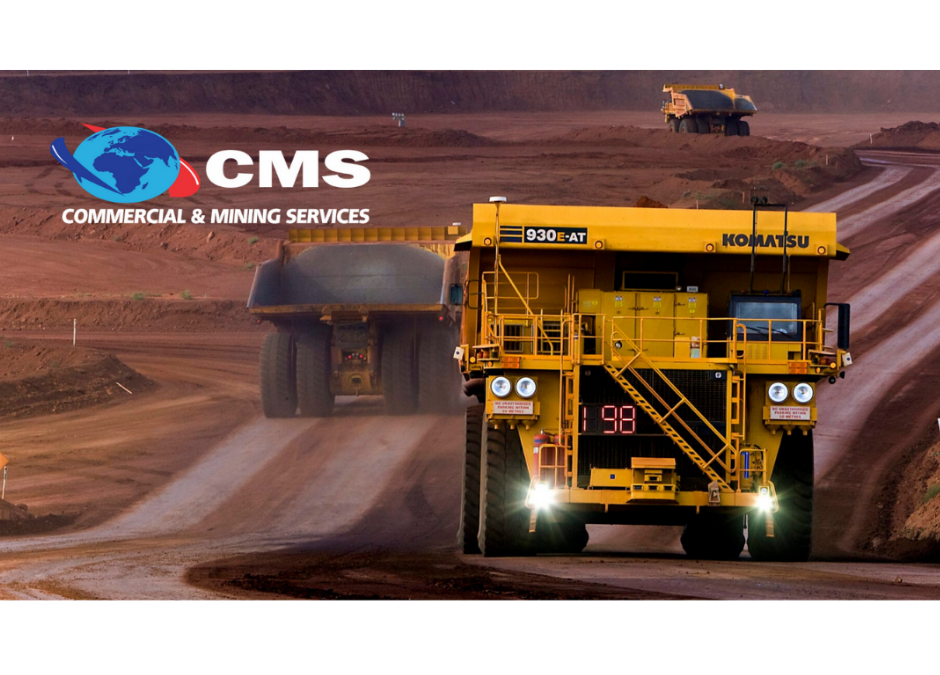CMS – Services Offered